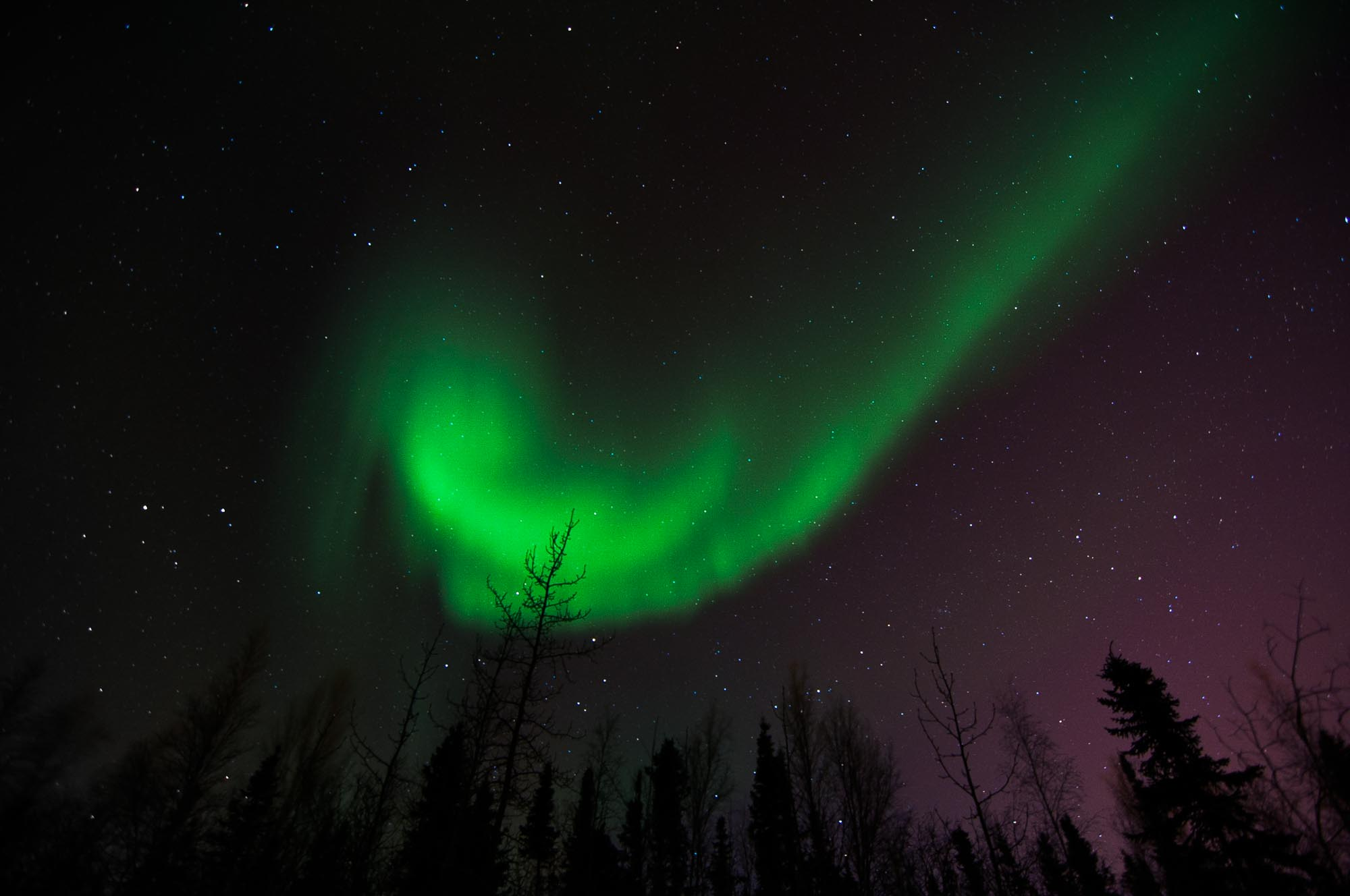 Attractive Aurora/Northern Lights In Yellowknife Images