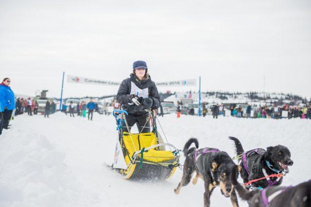 Yellowknife Dog Sledding