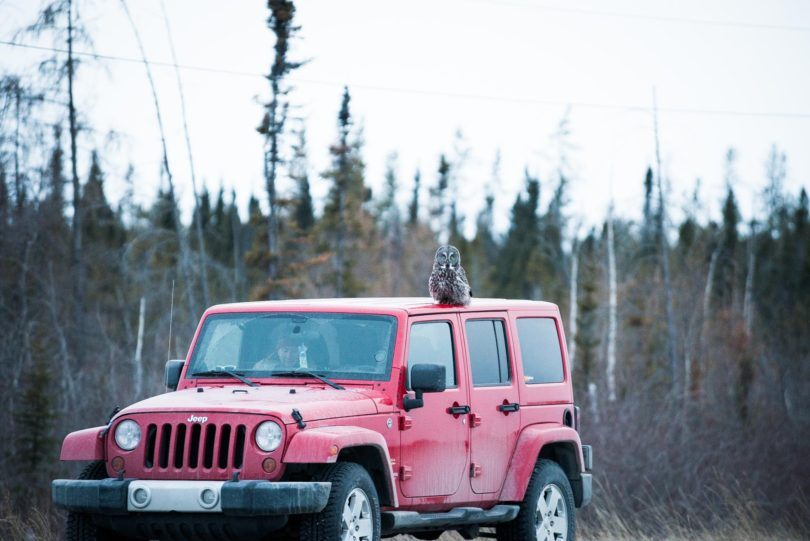 Yellowknife Car Rentals
