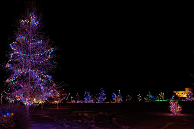 Yellowknife Christmas Lights