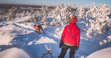 Yellowknife Dog Walking Areas